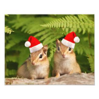 Santa Baby Chipmunks Photo Art