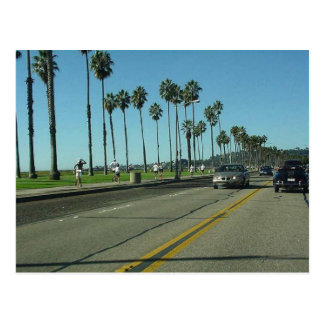 Santa Barbara Palmtrees Road Postcard
