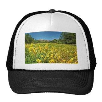Santa Barbara Wildflowers Mesh Hats