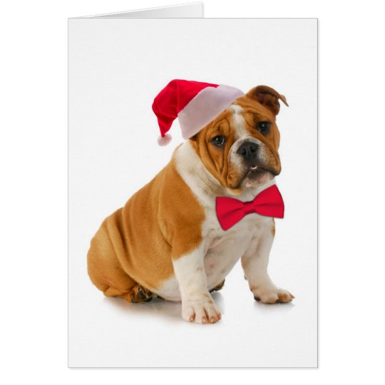 Santa Bulldog Christmas Card