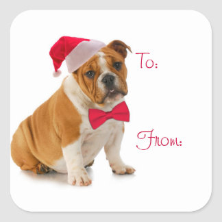 Santa Bulldog Gift Stickers