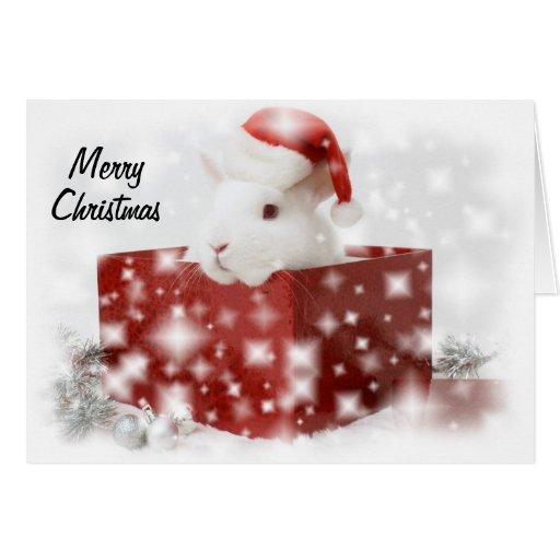 santa bunny christmas card