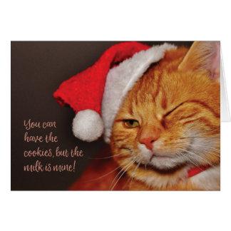 Santa Cat blank holiday greeting card