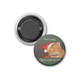 Santa Cat Magnet