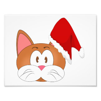 Santa Cat Photo