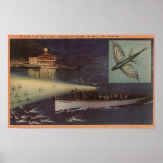 Santa Catalina Island, CA Casino, Flying Fish Poster