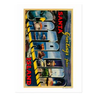Santa Catalina Island, California Postcard