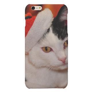 Santa claus cat - merry christmas - pet cat