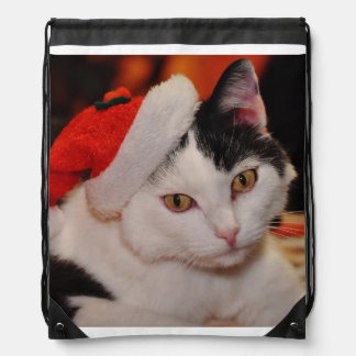 Santa claus cat - merry christmas - pet cat drawstring bag