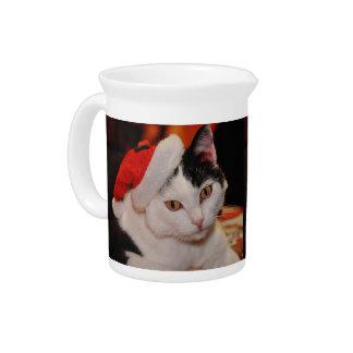 Santa claus cat - merry christmas - pet cat pitcher