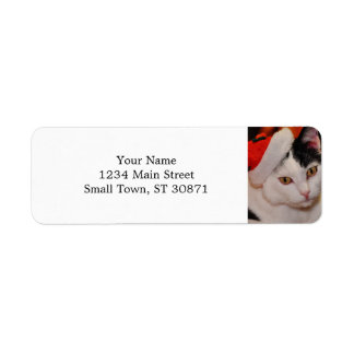 Santa claus cat - merry christmas - pet cat return address label