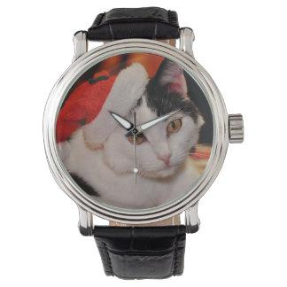 Santa claus cat - merry christmas - pet cat watch