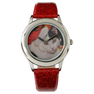 Santa claus cat - merry christmas - pet cat watch