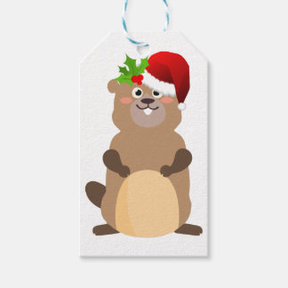 Santa Claus christmas gopher Gift Tags