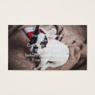 Santa claus dog -funny pug - dog claus business card
