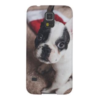Santa claus dog -funny pug - dog claus galaxy s5 cover