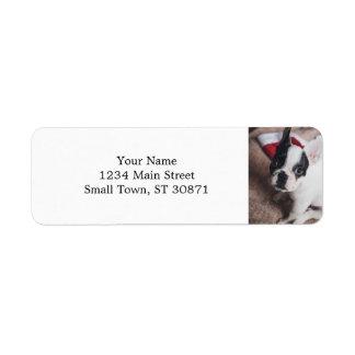 Santa claus dog -funny pug - dog claus return address label