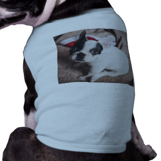 Santa claus dog -funny pug - dog claus shirt