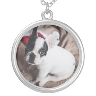 Santa claus dog -funny pug - dog claus silver plated necklace