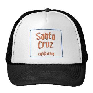 Santa Cruz California BlueBox Mesh Hats