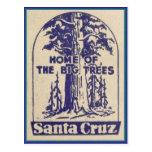 Santa Cruz California - Home of the Big Trees Post Cards