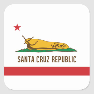 Santa Cruz Republic Banana Slug Flag Square Sticker