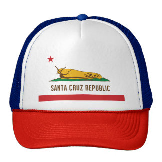 Santa Cruz Republic Slug Flag Cap