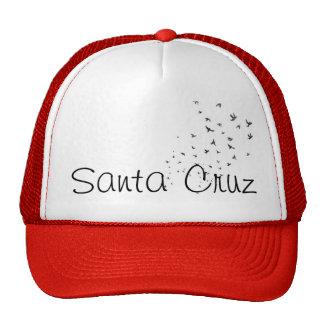 Santa Cruz Trucker Hat