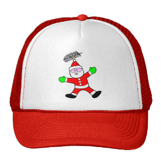 Santa Decoration Hat