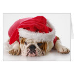 Santa Dog Greeting Card
