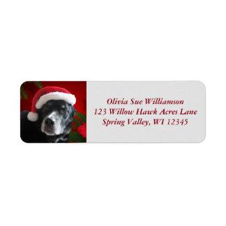 Santa Dog-Lab/Rott Mix with Pointsettia Return Address Label
