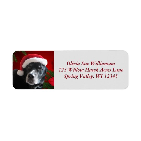 Santa Dog-Lab/Rott Mix with Pointsettia Return Address Label