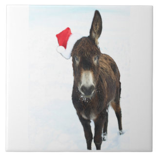 Santa Donkey Trivet