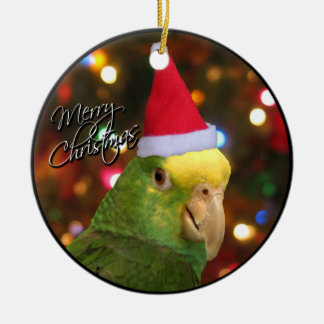 Santa DYH Amazon Christmas Ornament