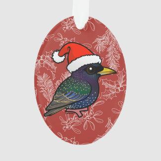 Santa European Starling
