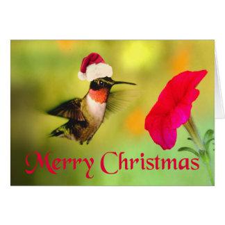 Santa Hat Hummingbird Christmas Card
