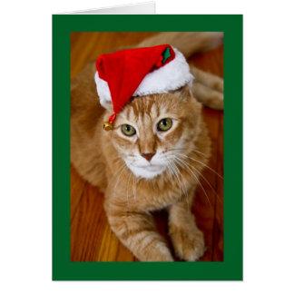 Santa Kitty Christmas Card