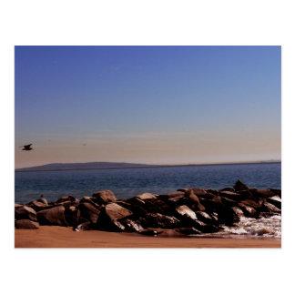 Santa Monica, CA Oceanview Postcard