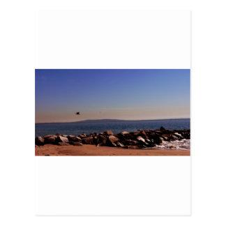 Santa Monica CA Oceanview Post Card