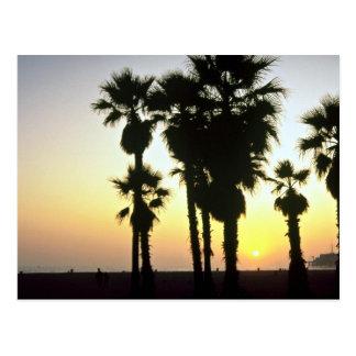 Santa Monica, Los Angeles, California, U.S.A. Postcard