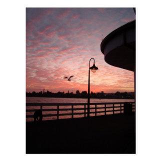 Santa Monica Pink Postcard