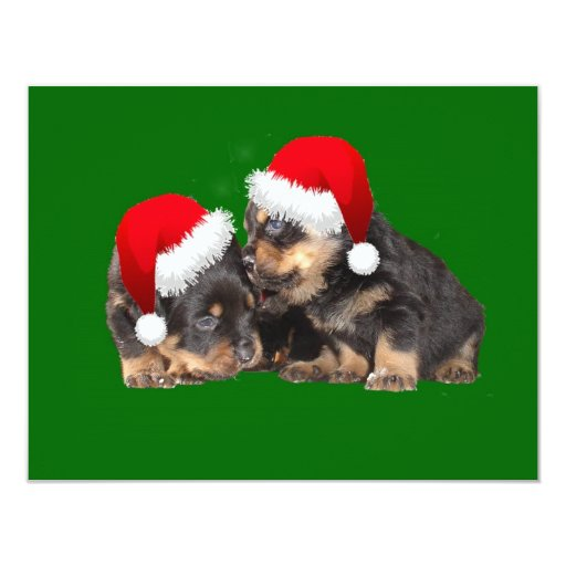 Santa Paws Is Coming to Town 11 Cm X 14 Cm Invitation Card