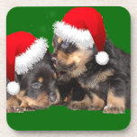 Santa Paws Is Coming to Town Beverage Coaster