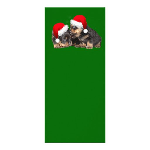 Santa Paws Is Coming to Town Rack Card