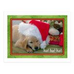 Santa paws Pets - Christmas card Post Cards