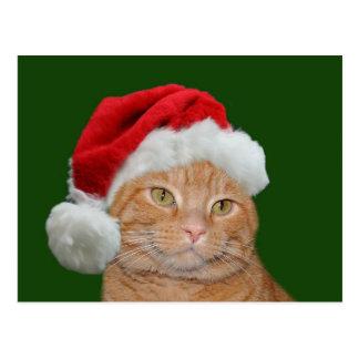 Santa Paws Post Card