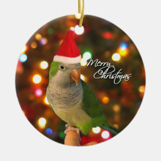 Santa Quaker Parakeet Christmas Ornament