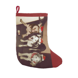 santa siberian husky christmas stocking