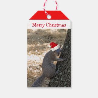 Santa Squirrel Christmas Gift Tag