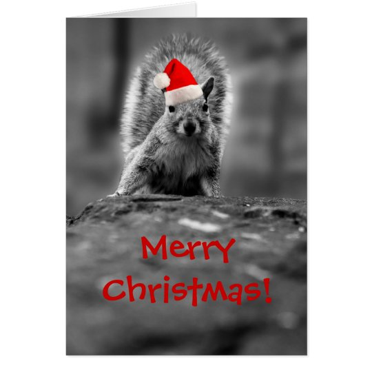 Santa Squirrel Merry Christmas Card
